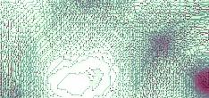 virus scanner virus scanner
