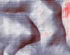 virus bild